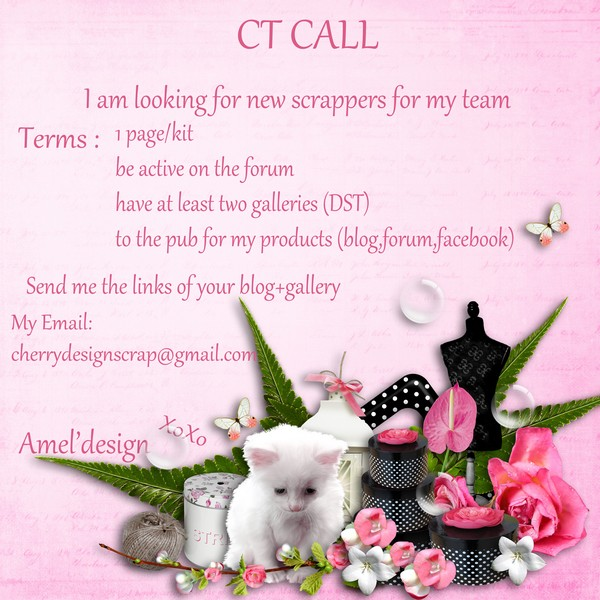 CT call Amel'Design Amel_p12