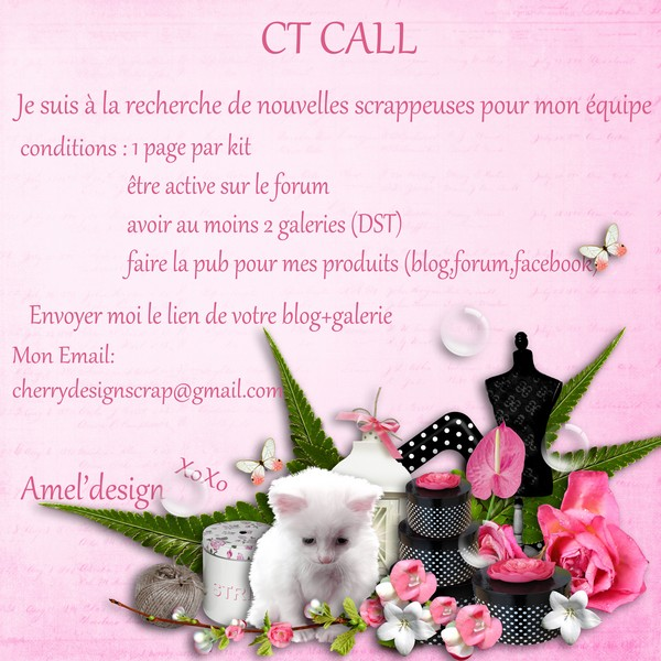 CT call Amel'Design Amel_p13