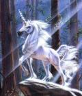 Forum Astrologie ASTRO-CIEL Avatar10