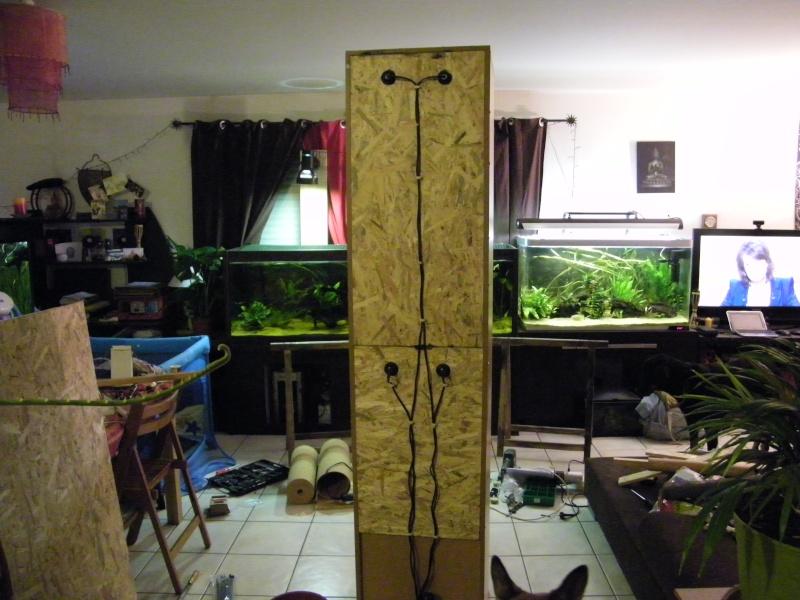 fabrication térrarium tropical  101_2542