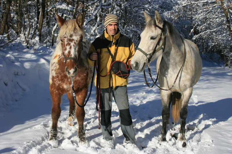 Nouveau concours photos ! La neige, vous, vos chevaux ! - Page 2 Img_3610