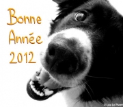 Joyeux anniversaire Porkiller 2012_715
