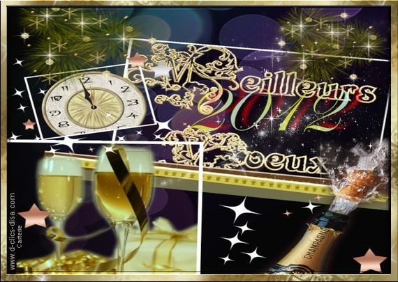 Bonne année 2012_911