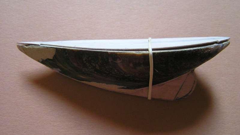 Pen Duick en   bateau-moule  412