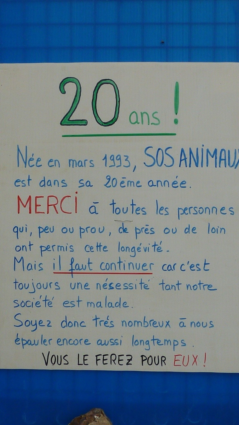 EN MARS 2013 L'ASSOCIATION SOS ANIMAUX FËTE SES 20 ANS  P1010010
