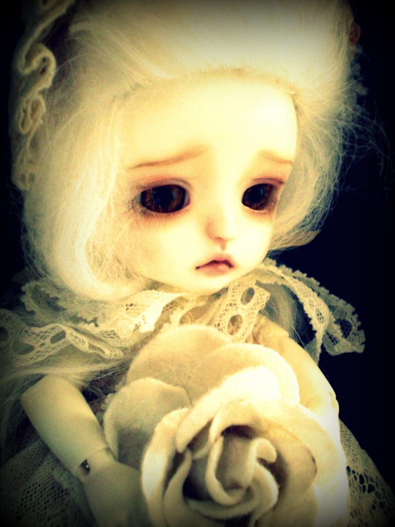 Acanthe [Lati Yellow Léa] Pb060012