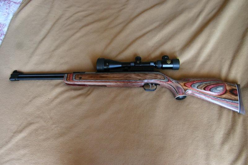 Les armes de Bosquetia (Màj 13/07/2011) Img_3213
