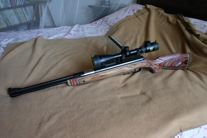 Les armes de Bosquetia (Màj 13/07/2011) Img_3214