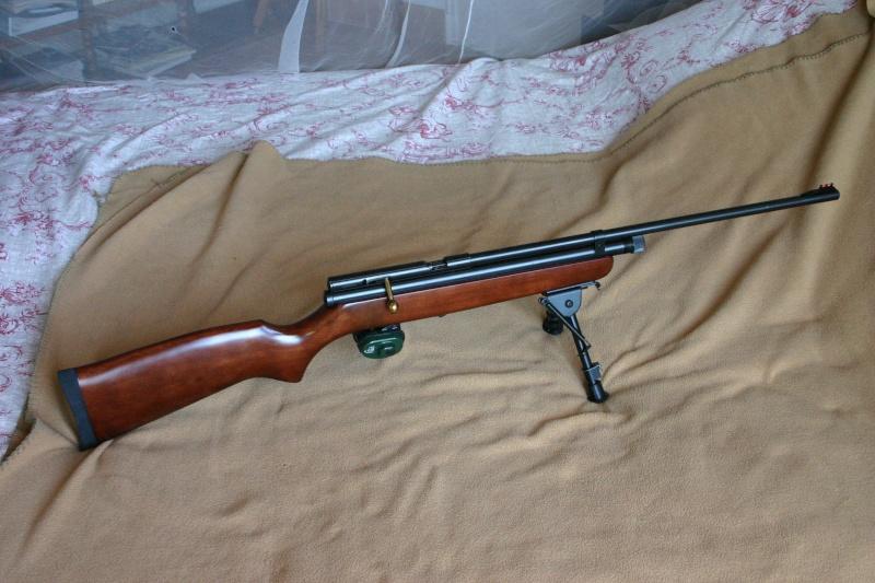 Les armes de Bosquetia (Màj 13/07/2011) Img_3217