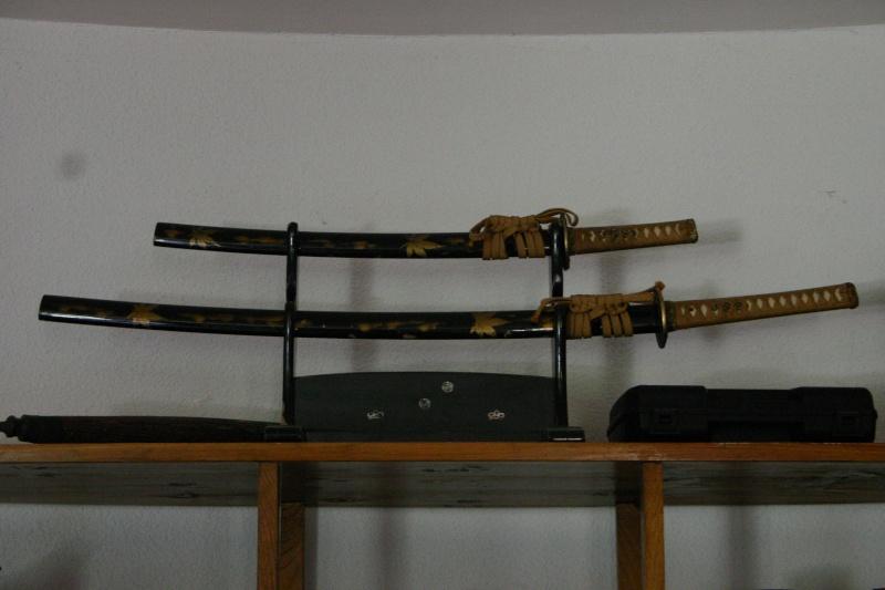 Les armes de Bosquetia (Màj 13/07/2011) Img_3220