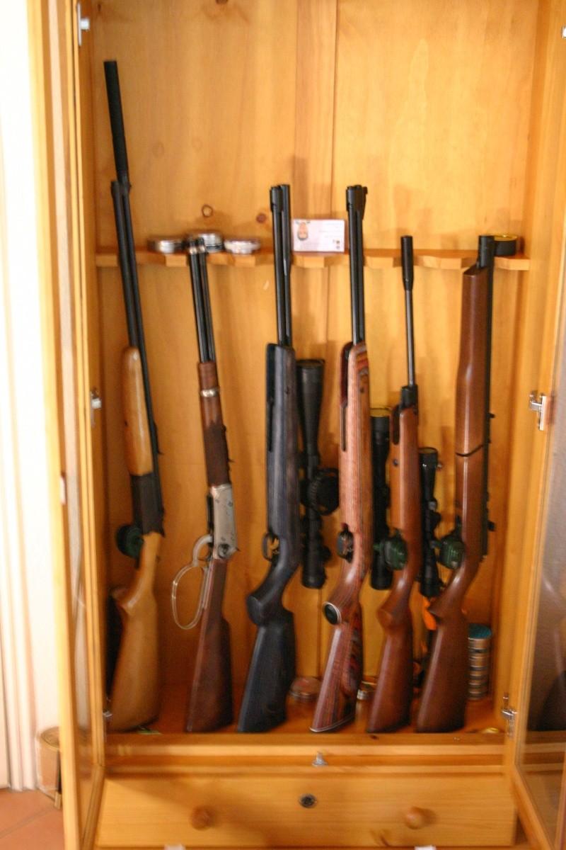 Les armes de Bosquetia (Màj 13/07/2011) Img_3221