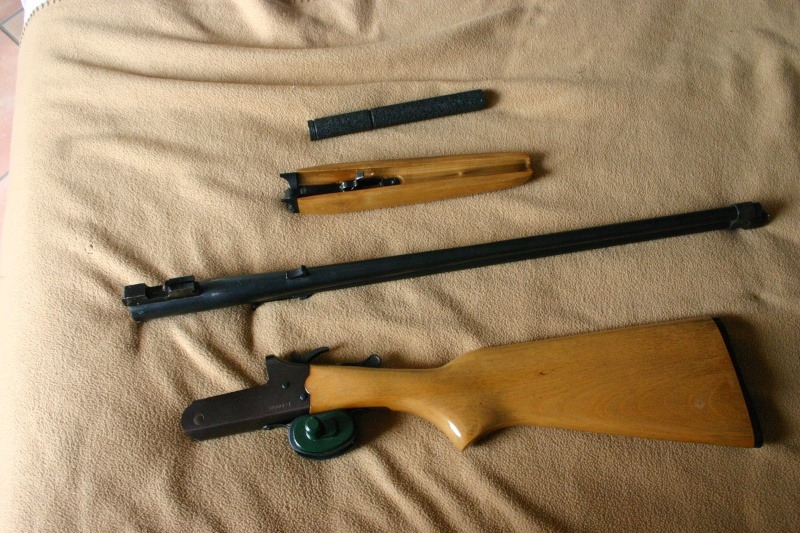 Les armes de Bosquetia (Màj 13/07/2011) - Page 3 Img_3231