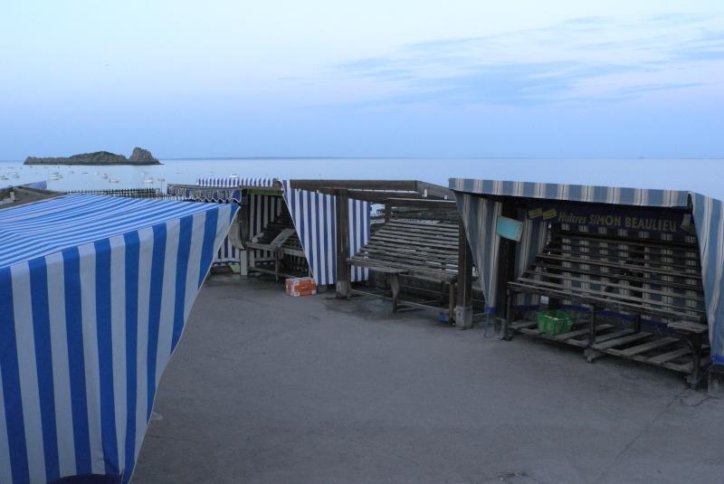 Photographie : Le port de Cancale (35) L1041111