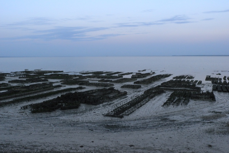 Photographie : Le port de Cancale (35) L1041112