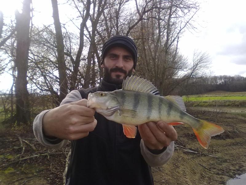 Votre pêche de Janvier 01012011