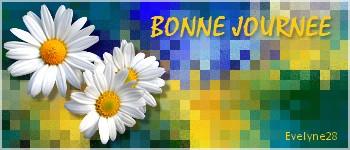 """N °  41 PFS """" Fond Bannière """" :"""" Effet Mosaïque"""" Fond_b11"""