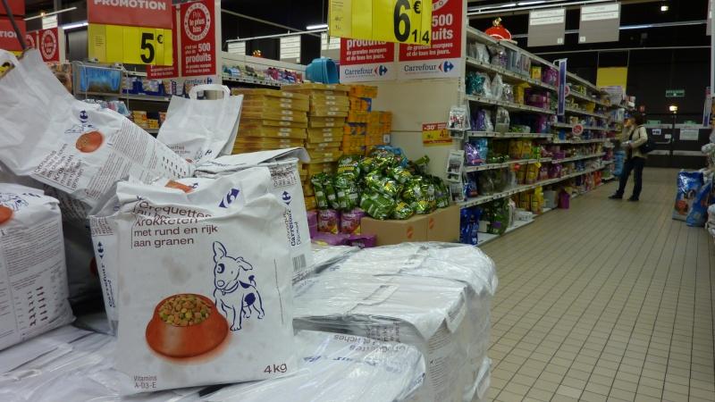Chariots de Noël 2012 P1010024