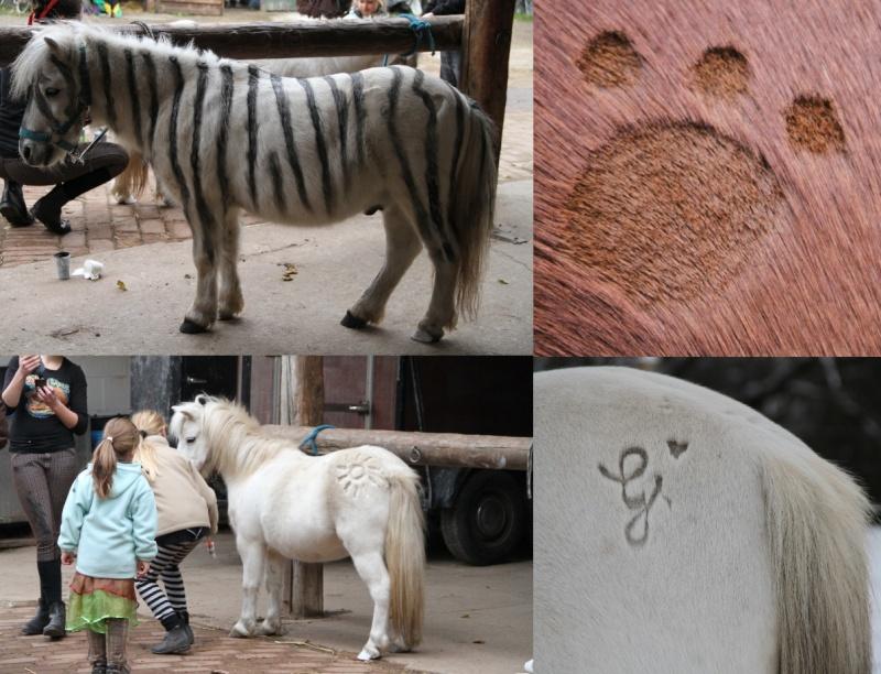 dieses bild vergrerndieses bild verkleinern anklicken um die volle gre zu sehen - Pferd Scheren Muster