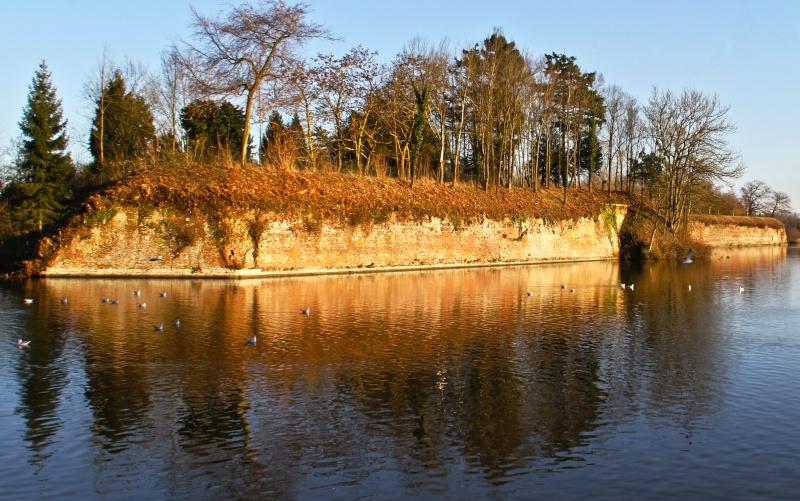 Avesnois : Étang de Le Quesnoy. Atang_10