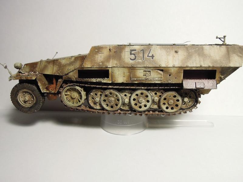 épave sdkfz 251 Dragon 1/35 Dscn3641