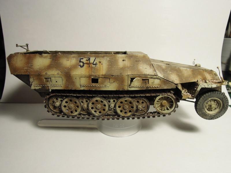 épave sdkfz 251 Dragon 1/35 Dscn3644