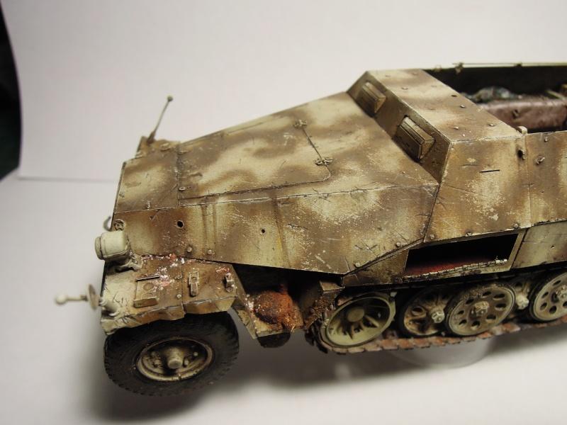 épave sdkfz 251 Dragon 1/35 Dscn3646