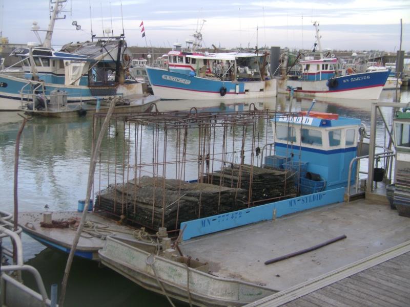 Barge , Chaland , Plate , Ponton et Lasse ostréicole. Dsc06768