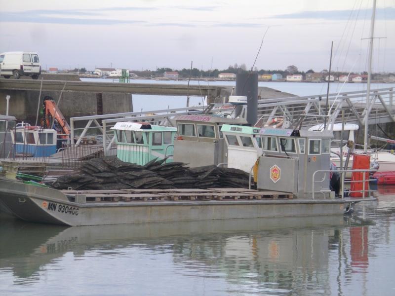 Barge , Chaland , Plate , Ponton et Lasse ostréicole. Dsc06772