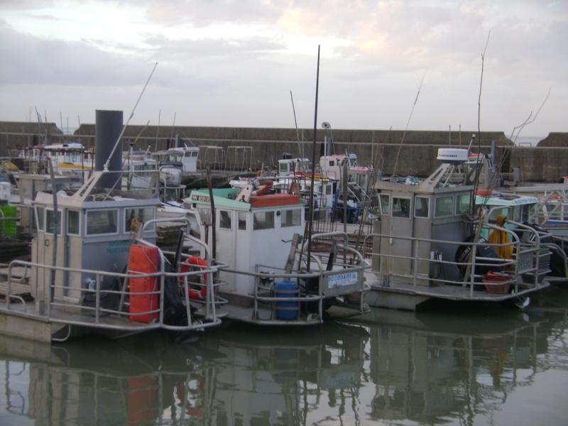 Barge , Chaland , Plate , Ponton et Lasse ostréicole. Dsc06773