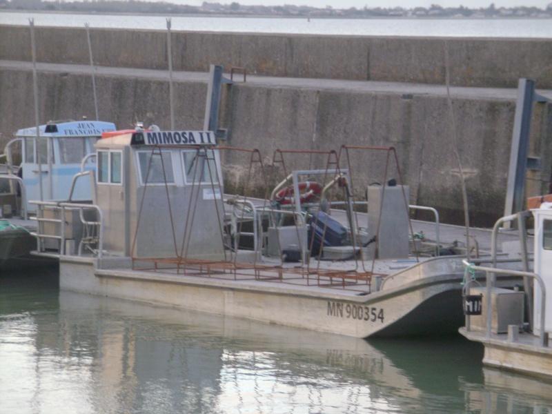 Barge , Chaland , Plate , Ponton et Lasse ostréicole. Dsc06777
