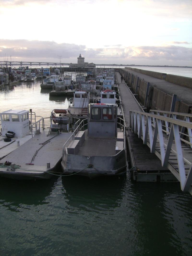 Barge , Chaland , Plate , Ponton et Lasse ostréicole. Dsc06779
