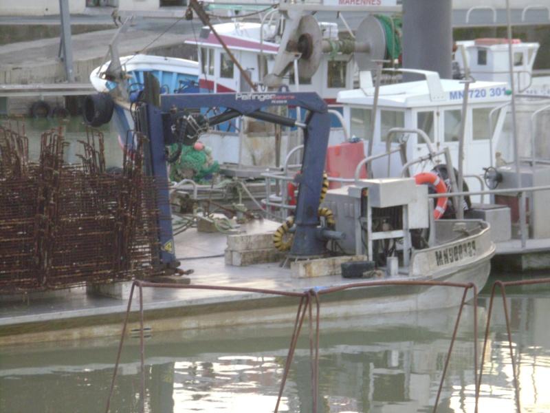 Barge , Chaland , Plate , Ponton et Lasse ostréicole. Dsc06785
