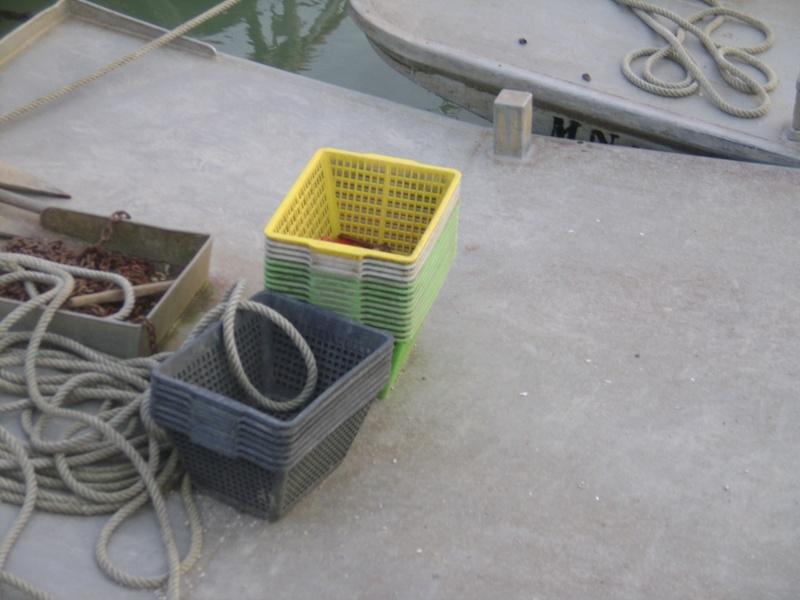 Barge , Chaland , Plate , Ponton et Lasse ostréicole. Dsc06786