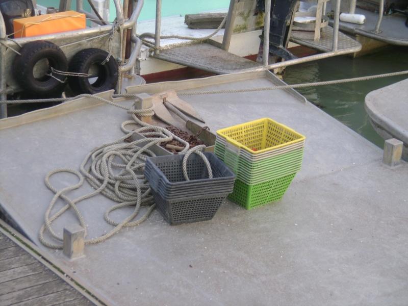 Barge , Chaland , Plate , Ponton et Lasse ostréicole. Dsc06787