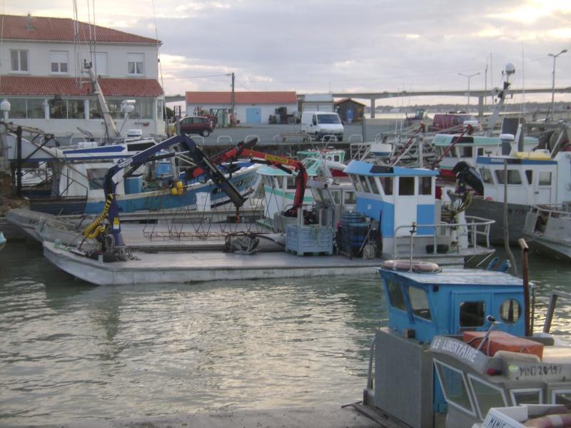 Barge , Chaland , Plate , Ponton et Lasse ostréicole. Dsc06790