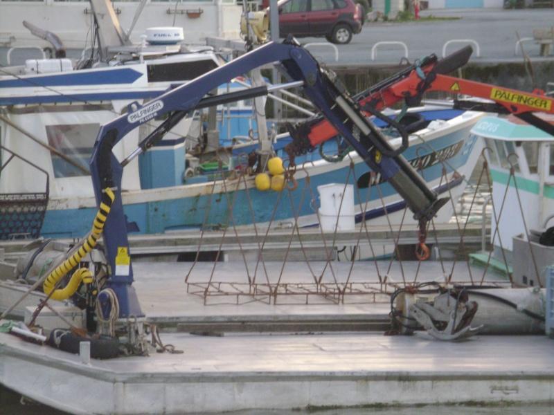 Barge , Chaland , Plate , Ponton et Lasse ostréicole. Dsc06791