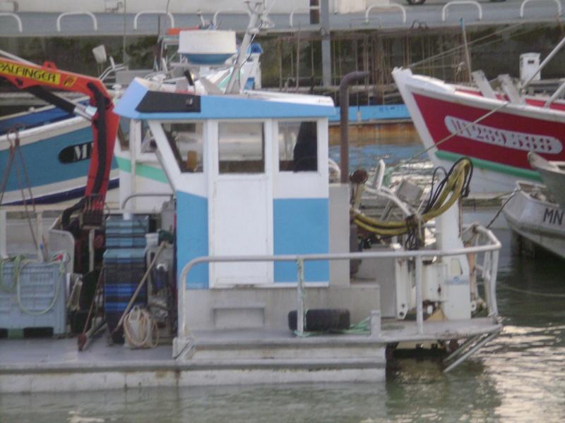 Barge , Chaland , Plate , Ponton et Lasse ostréicole. Dsc06792