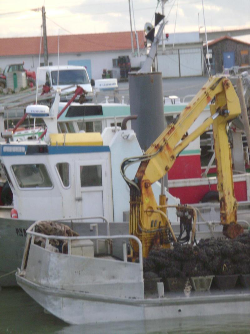 Barge , Chaland , Plate , Ponton et Lasse ostréicole. Dsc06793