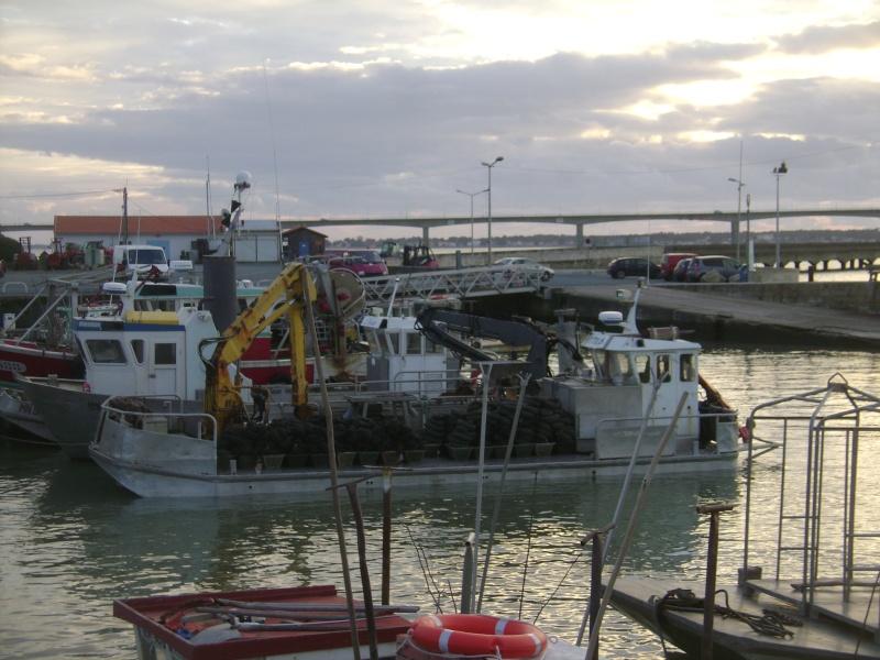 Barge , Chaland , Plate , Ponton et Lasse ostréicole. Dsc06819