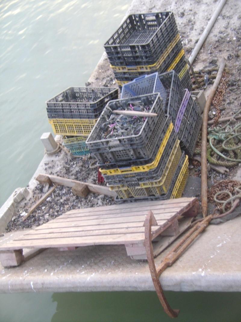 Barge , Chaland , Plate , Ponton et Lasse ostréicole. Dsc06821