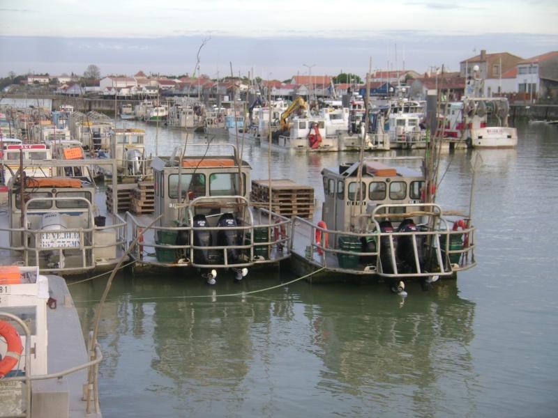 Barge , Chaland , Plate , Ponton et Lasse ostréicole. Dsc06822