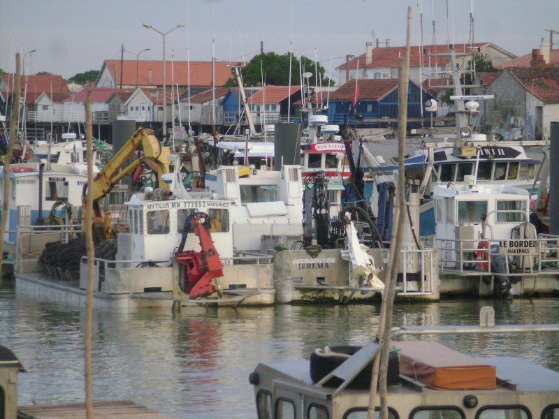 Barge , Chaland , Plate , Ponton et Lasse ostréicole. Dsc06823