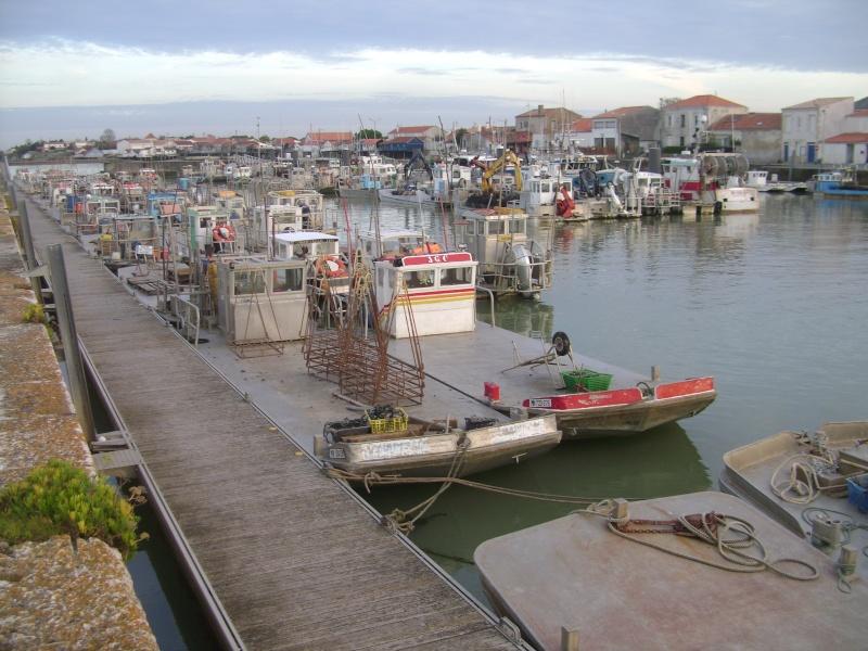 Barge , Chaland , Plate , Ponton et Lasse ostréicole. Dsc06824