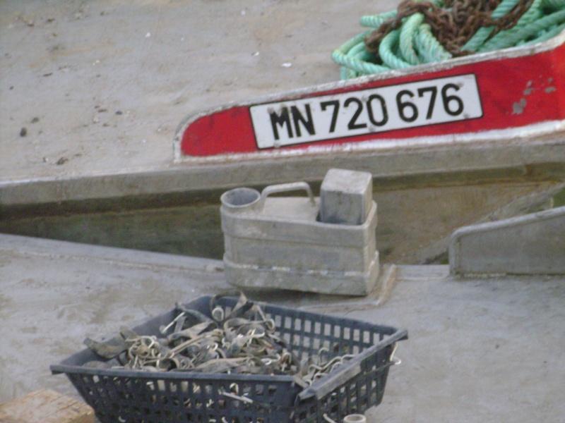 Barge , Chaland , Plate , Ponton et Lasse ostréicole. Dsc06826