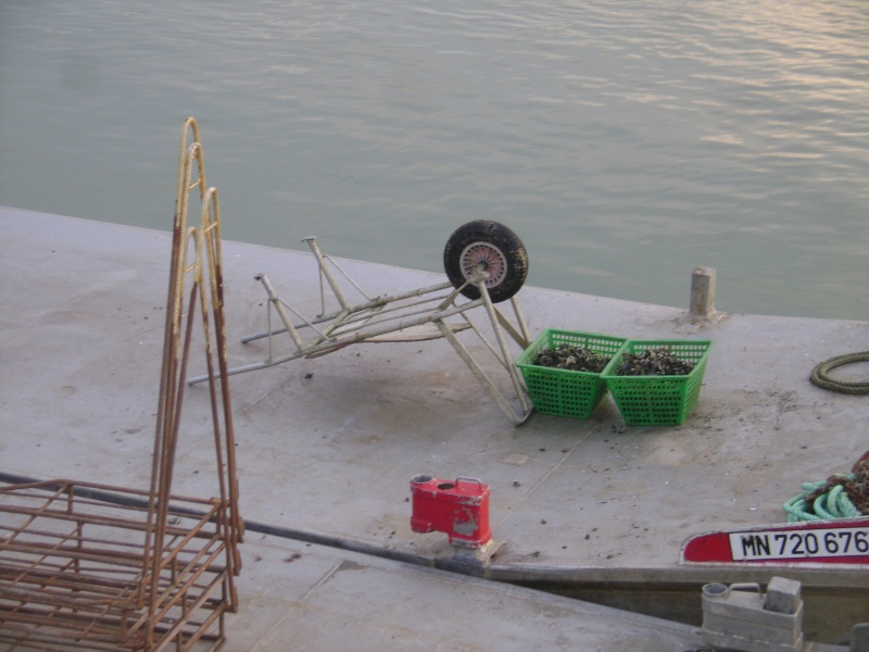 Barge , Chaland , Plate , Ponton et Lasse ostréicole. Dsc06827