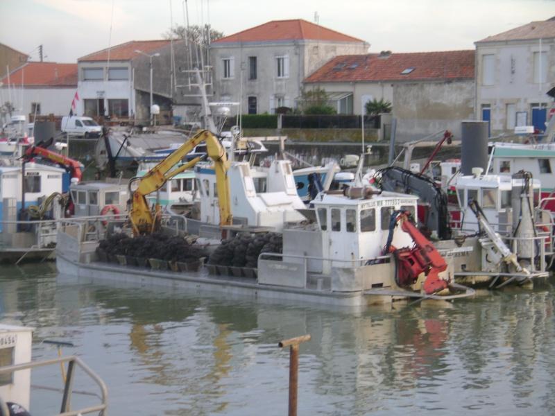 Barge , Chaland , Plate , Ponton et Lasse ostréicole. Dsc06830