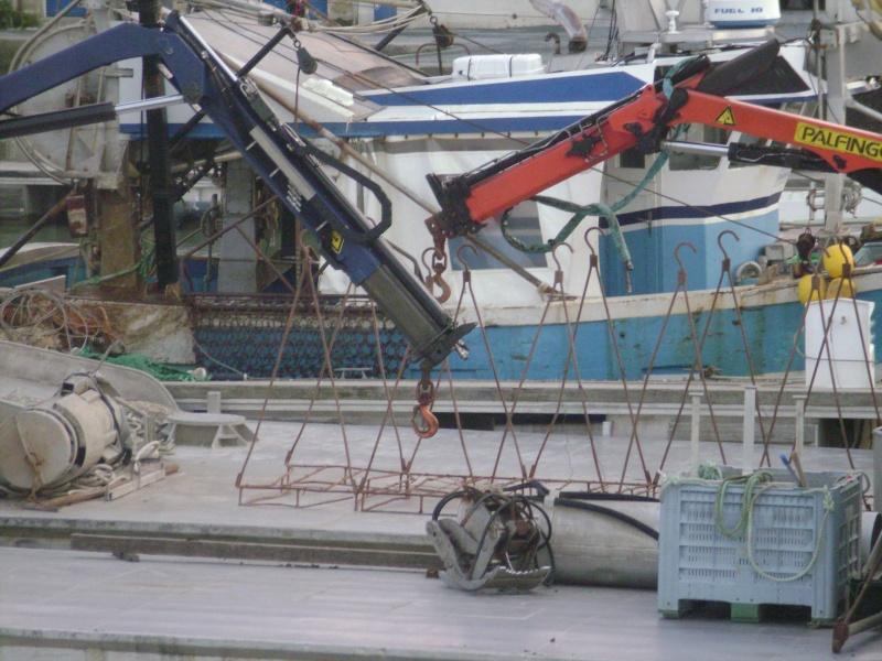Barge , Chaland , Plate , Ponton et Lasse ostréicole. Dsc06834