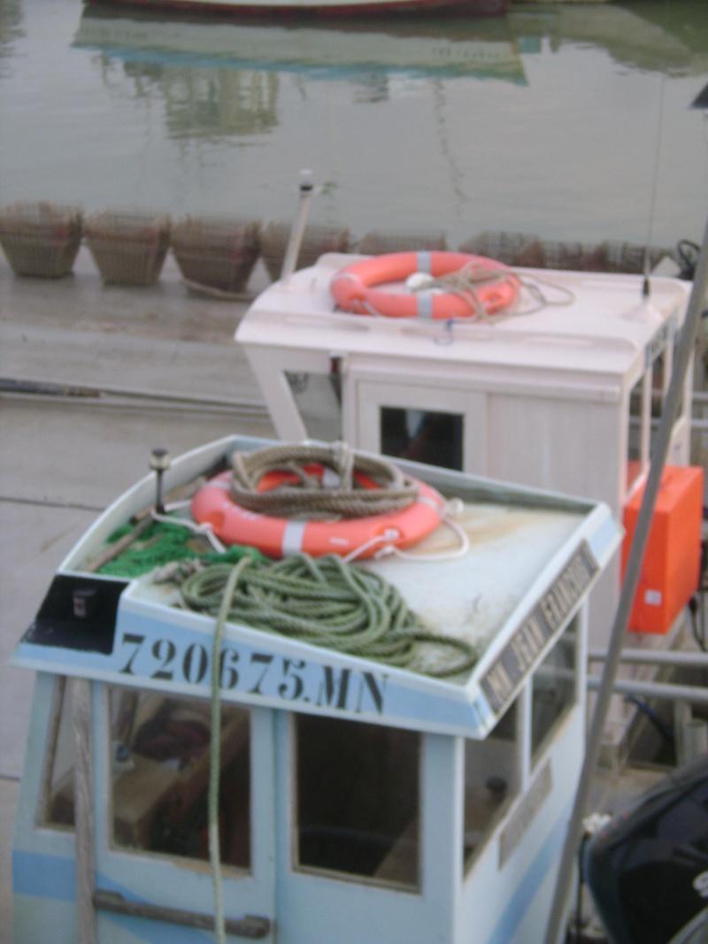 Barge , Chaland , Plate , Ponton et Lasse ostréicole. Dsc06836
