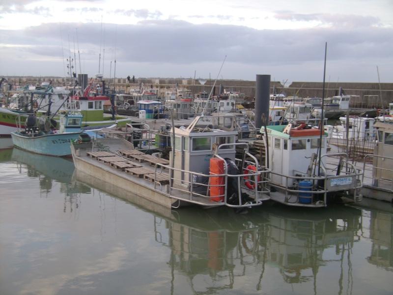 Barge , Chaland , Plate , Ponton et Lasse ostréicole. Dsc06844