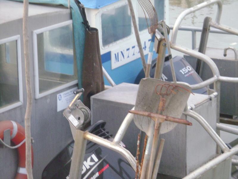 Barge , Chaland , Plate , Ponton et Lasse ostréicole. Dsc06849